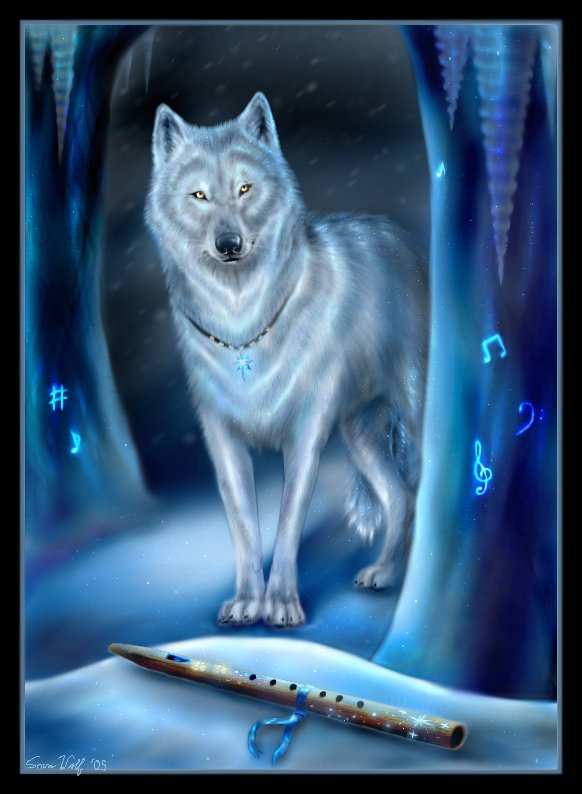 Toldor , loup d'Isandel Loup%20(43)